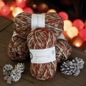 WYS Signature 4 Ply - Christmas Robin 2019