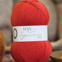 WYS Signature 4 Ply - Cayenne Pepper 510