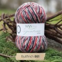 WYS Signature 4 Ply - Country Birds