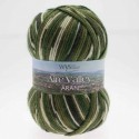 WYS Aire Valley Aran