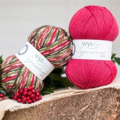 WYS Signature 4 Ply - Christmas Holly Berry