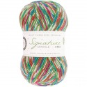 WYS Signature 4 Ply - 905 Fairy lights - Brilli