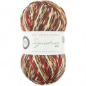 WYS Signature 4 Ply - Christmas Robin
