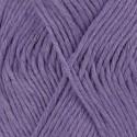 13 violeta