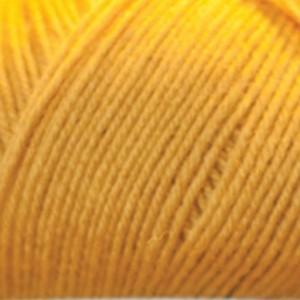 Butterscotch 240