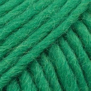Uni Colour 25 verde intenso