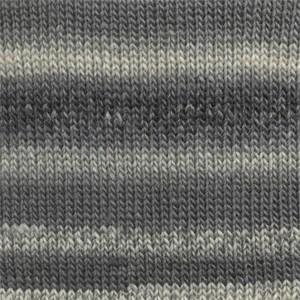 Print 13 gris