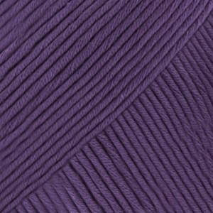 14 violeta